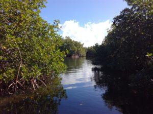 visite et balade Guadeloupe